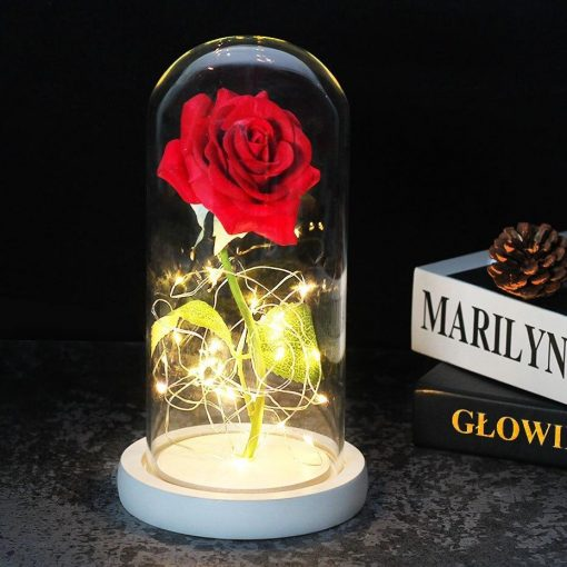 Rose Éternelle Sous Cloche Lumineuse